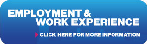 Employment and Work Experience